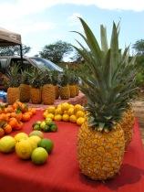 Pineapple?