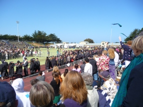The View from the Stands