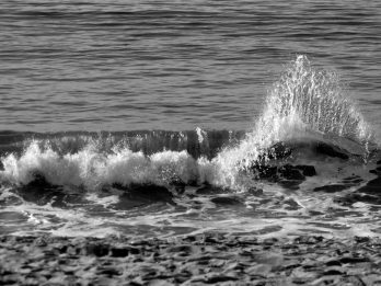 TheSeaIsWaving