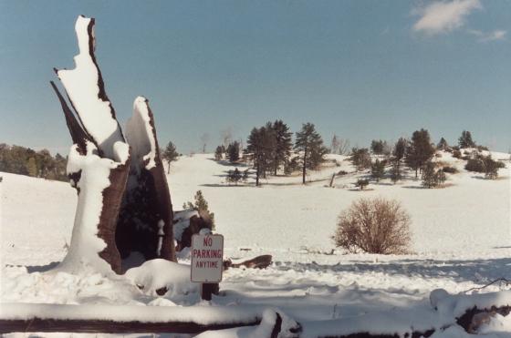 Snowfall-Film