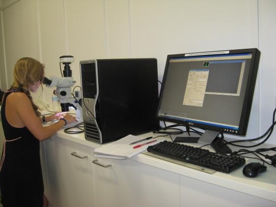 Larvalmicroscope