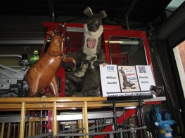 Fire Department Tour!